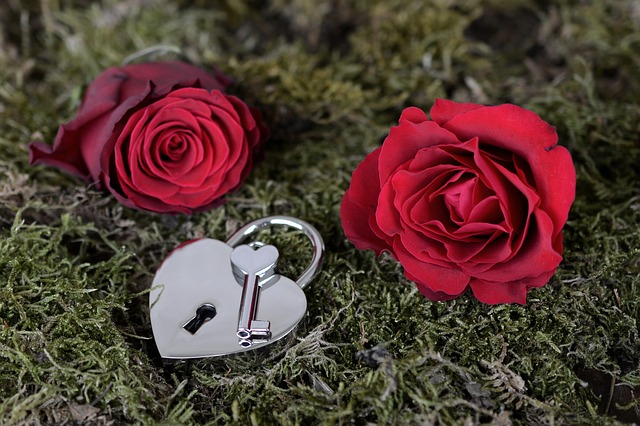Dwie róże i kłódka