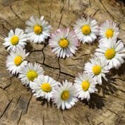 7 sposobów na wyznanie miłości